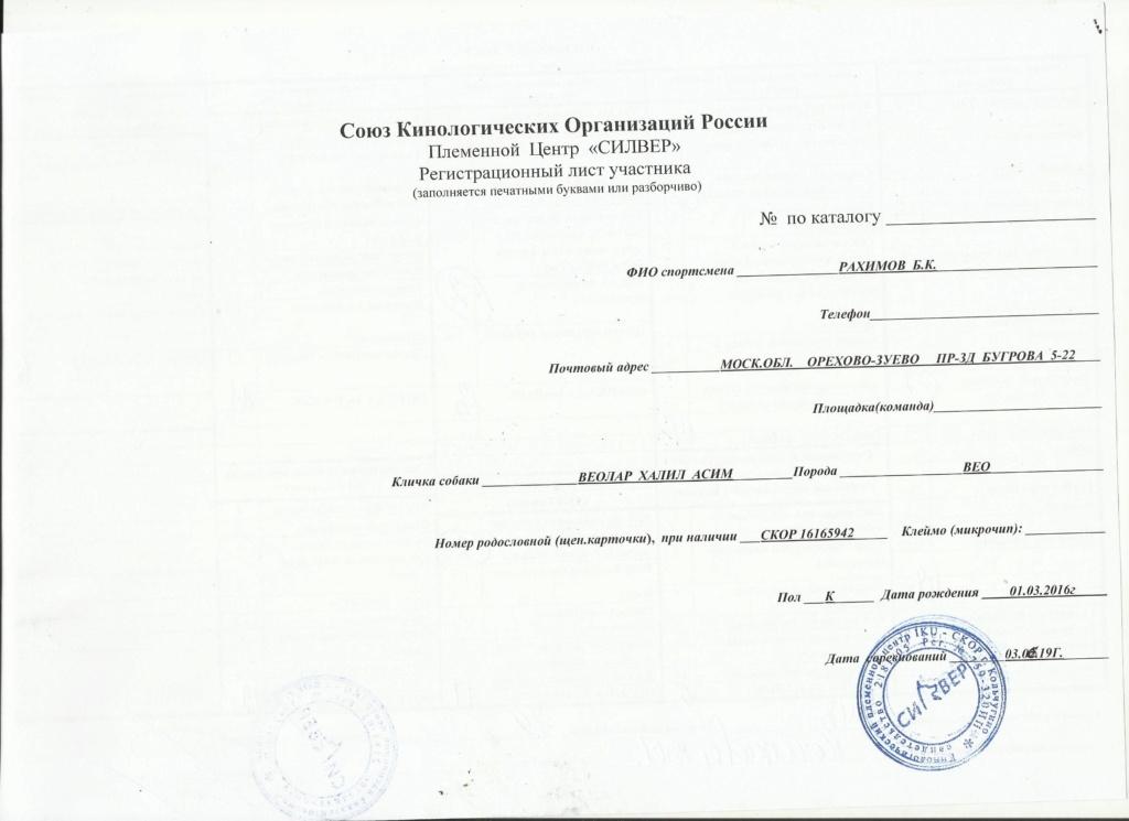 ВОСТОЧНО-ЕВРОПЕЙСКАЯ ОВЧАРКА ВЕОЛАР ХАЛИЛ АСИМ - Страница 7 Img_2054