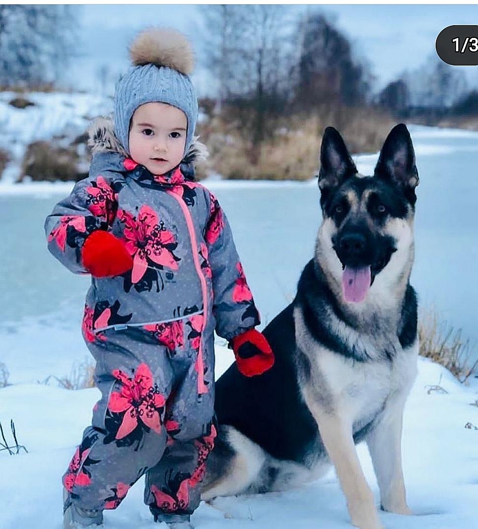"""веолар - Родился помет""""Э"""" 10-03-20 (Веолар Оша Квин-Марс) Screen25"""
