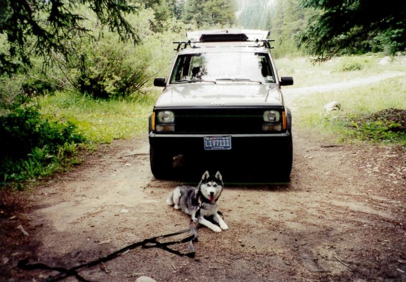 Tasha - I miss you! 10/28/97-10/30/13 Tasha_10