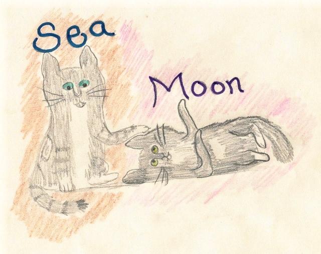 Em's Drawings Sea_an12