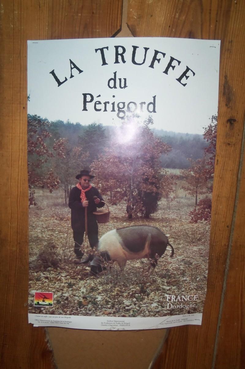 Reunion en France. - Page 3 101_0711