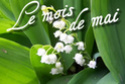 carnet de lecture de Belle étoile Mai110