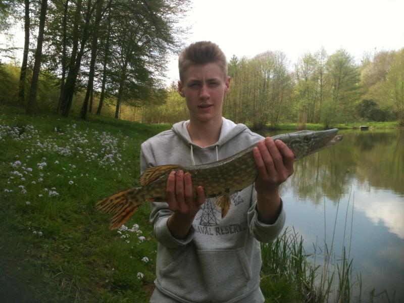 Ouverture brochet dans un petit étang 65cm_a10
