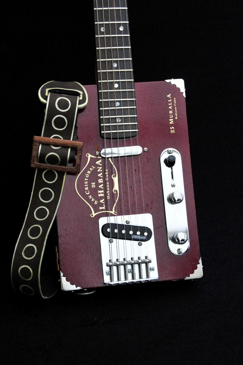 Cigar Box Guitar Gut Bucket - Page 3 _dsc9321