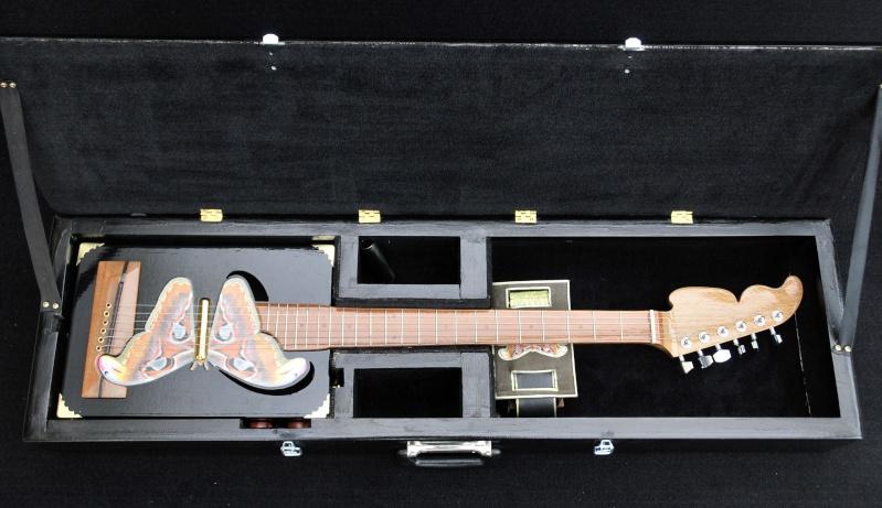 Cigar Box Guitar Gut Bucket - Page 4 _dsc9413
