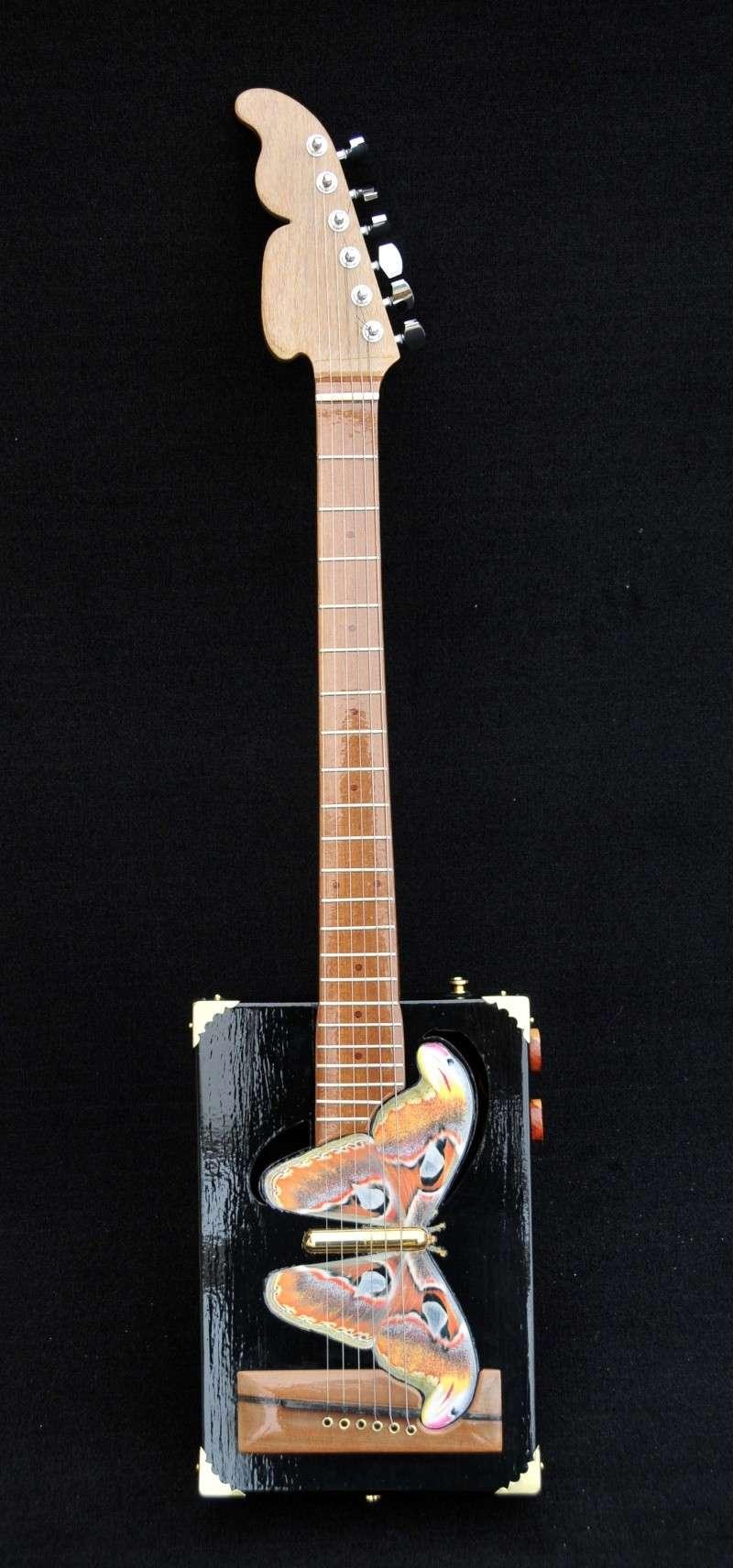 Cigar Box Guitar Gut Bucket - Page 4 _dsc9414