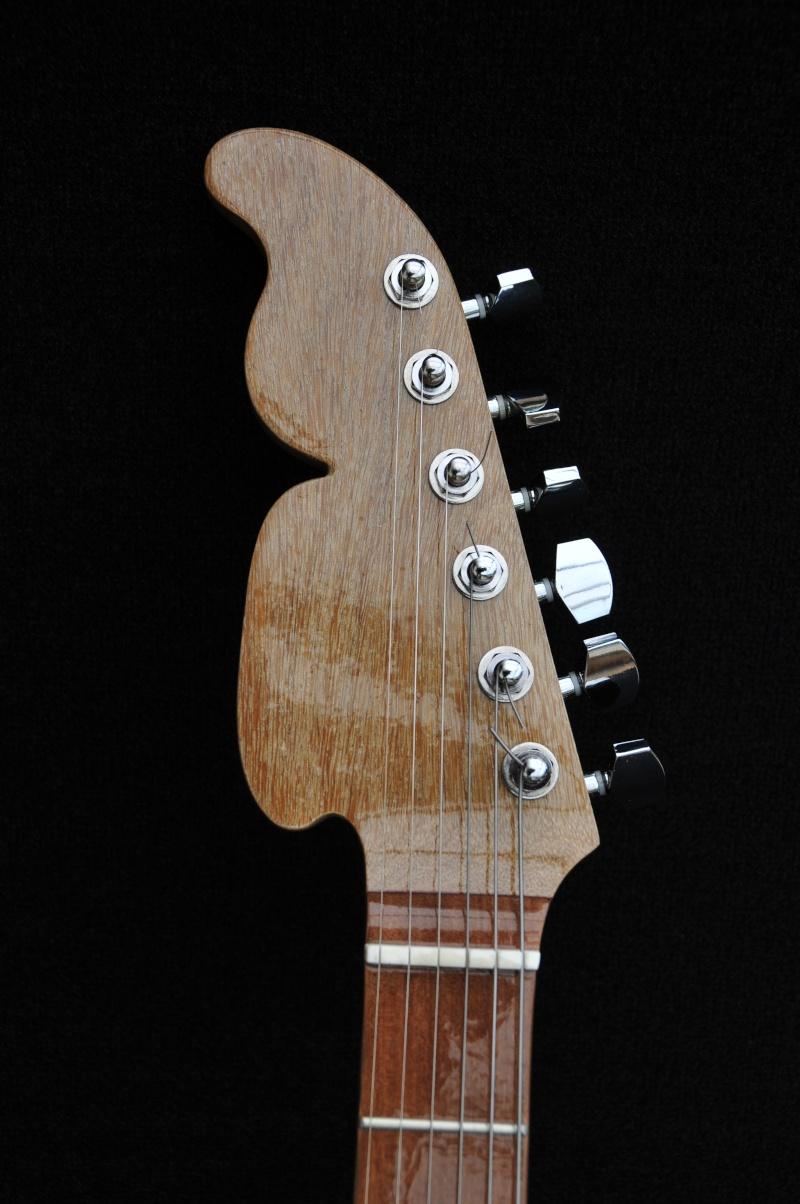 Cigar Box Guitar Gut Bucket - Page 4 _dsc9415