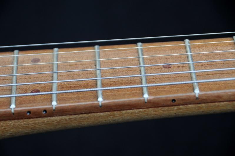 Cigar Box Guitar Gut Bucket - Page 4 _dsc9422