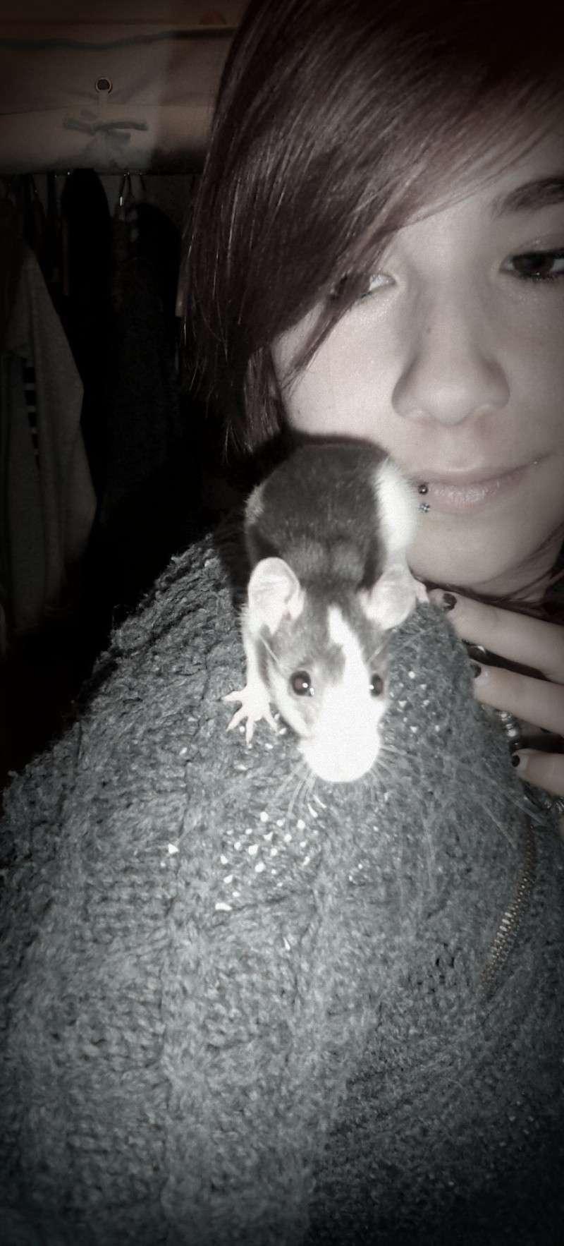 Mon petit Aldwyn !  Dsc05412