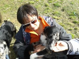 Photos des chiens d'Ecuras 20130525