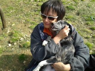 Photos des chiens d'Ecuras 20130526