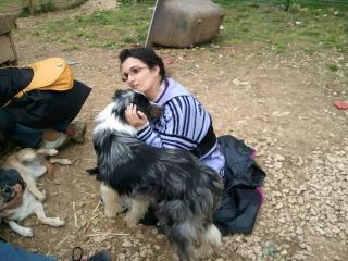 Photos des chiens d'Ecuras 29239211
