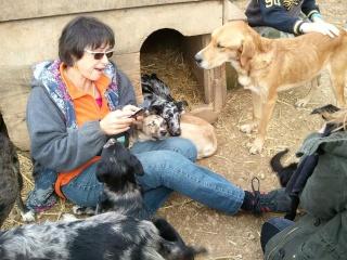 Photos des chiens d'Ecuras 29507311