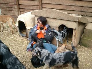 Photos des chiens d'Ecuras 48618511