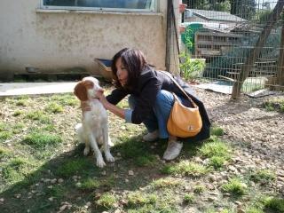 Photos des chiens d'Ecuras 93626212