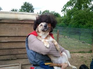 Photos des chiens d'Ecuras 94708611
