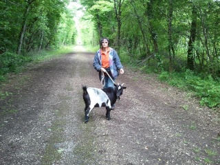 Photos des chiens d'Ecuras Eglant14