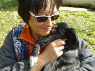 Photos des chiens d'Ecuras Gros_c10