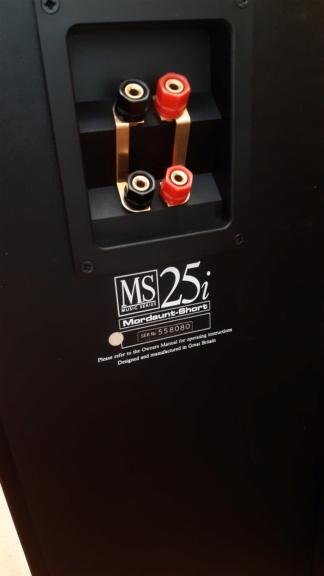 Diffusori Mordaunt Short usati, pareri 20210617