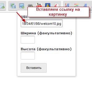 Проблема с окошком редактирования у форумчан Insert12