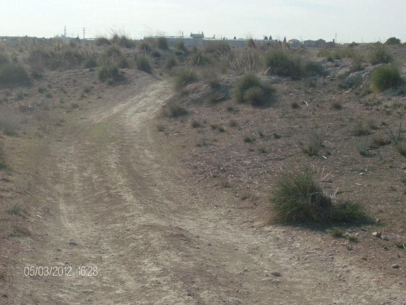 Fotos Sector 1 Campo510