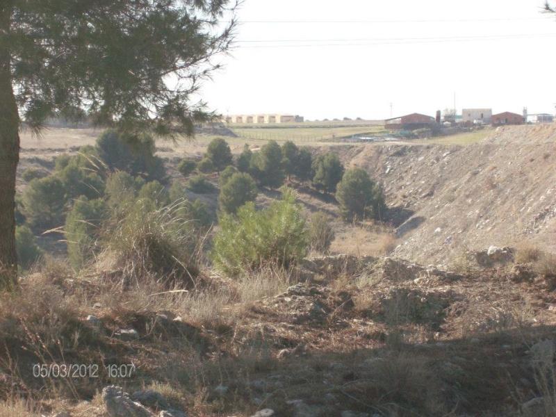 Fotos Sector 1 Campo710