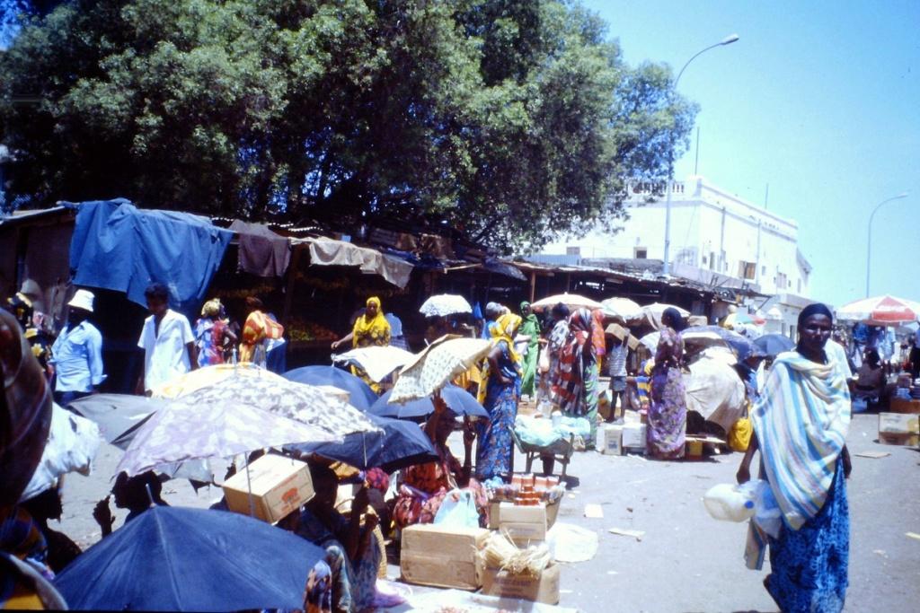 [Campagne] DJIBOUTI - TOME 1 - Page 9 Adjibo14