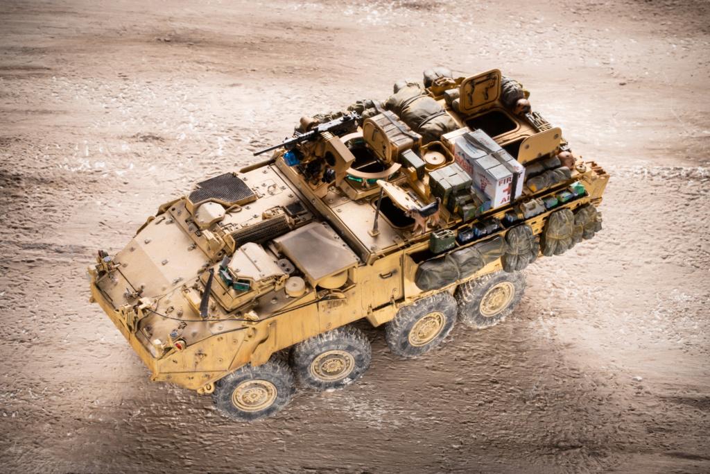 "Stryker M1131 "" Desert Storm "" Trumpeter 1/35 Termine _mg_9713"