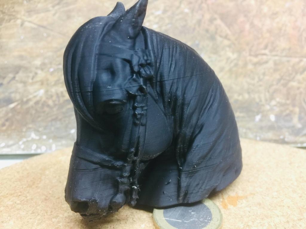 Napoléon a cheval  échelle 1/10 Img_2336
