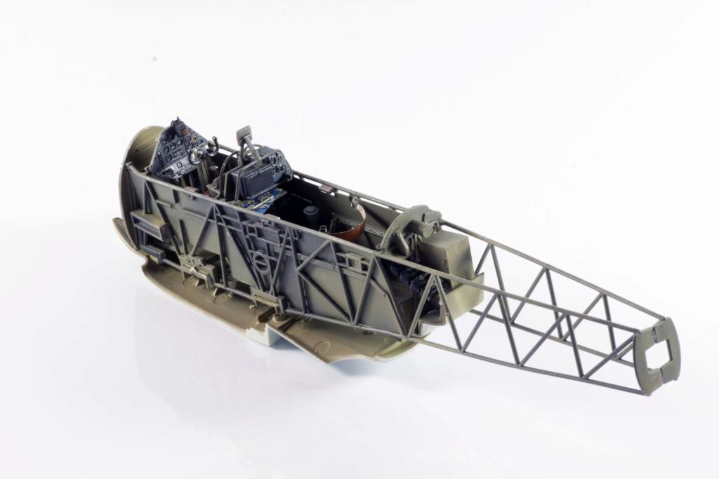 Arado Ar 196A-3 Seaplane - Revell - 1/32 - Page 4 Img_3928
