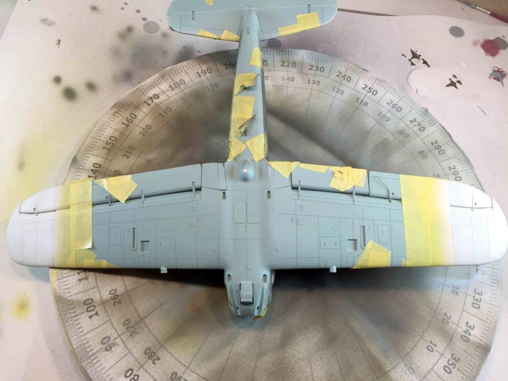 Arado Ar 196A-3 Seaplane - Revell - 1/32 - Page 8 Img_3964