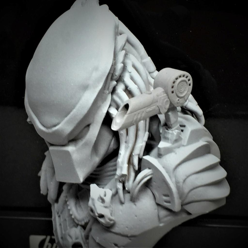 Buste Predator 1/10 Img_6157