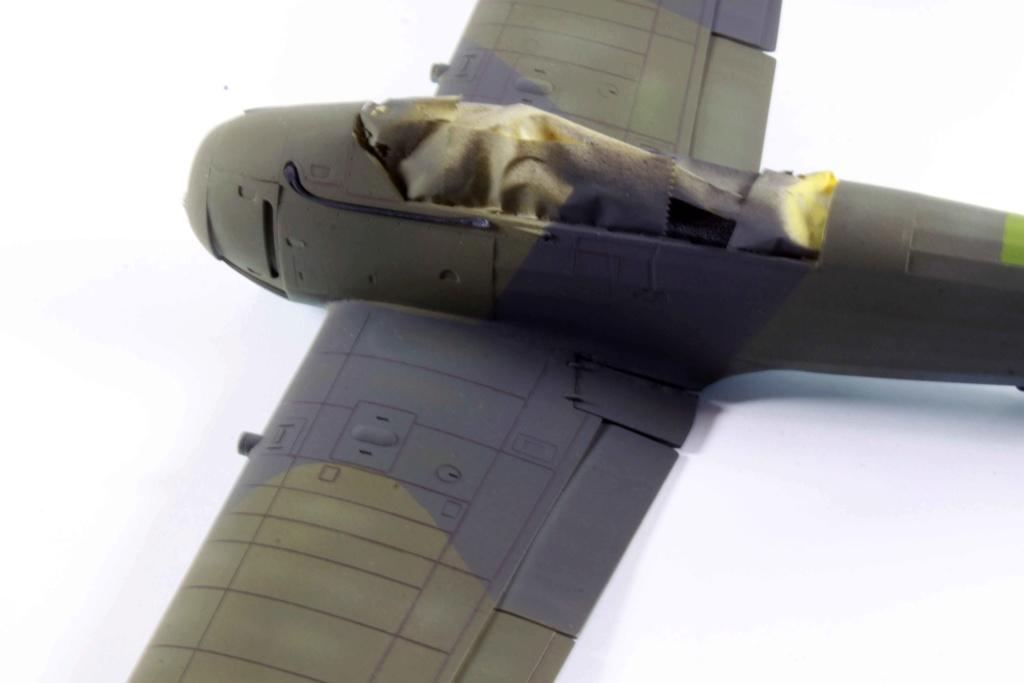 Arado Ar 196A-3 Seaplane - Revell - 1/32 - Page 8 Img_8821