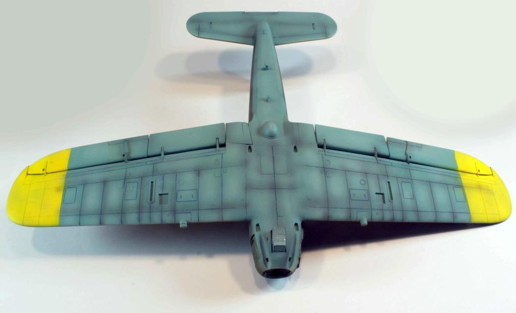 Arado Ar 196A-3 Seaplane - Revell - 1/32 - Page 8 Img_8823