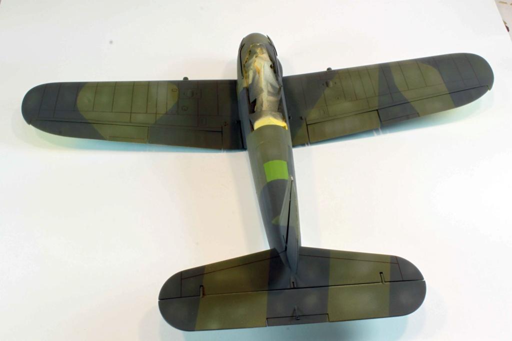 Arado Ar 196A-3 Seaplane - Revell - 1/32 - Page 8 Img_8824