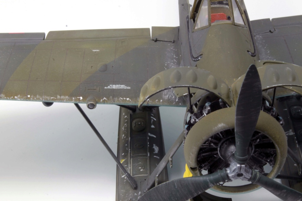 Arado Ar 196A-3 Seaplane - Revell - 1/32 - Page 8 Img_8933