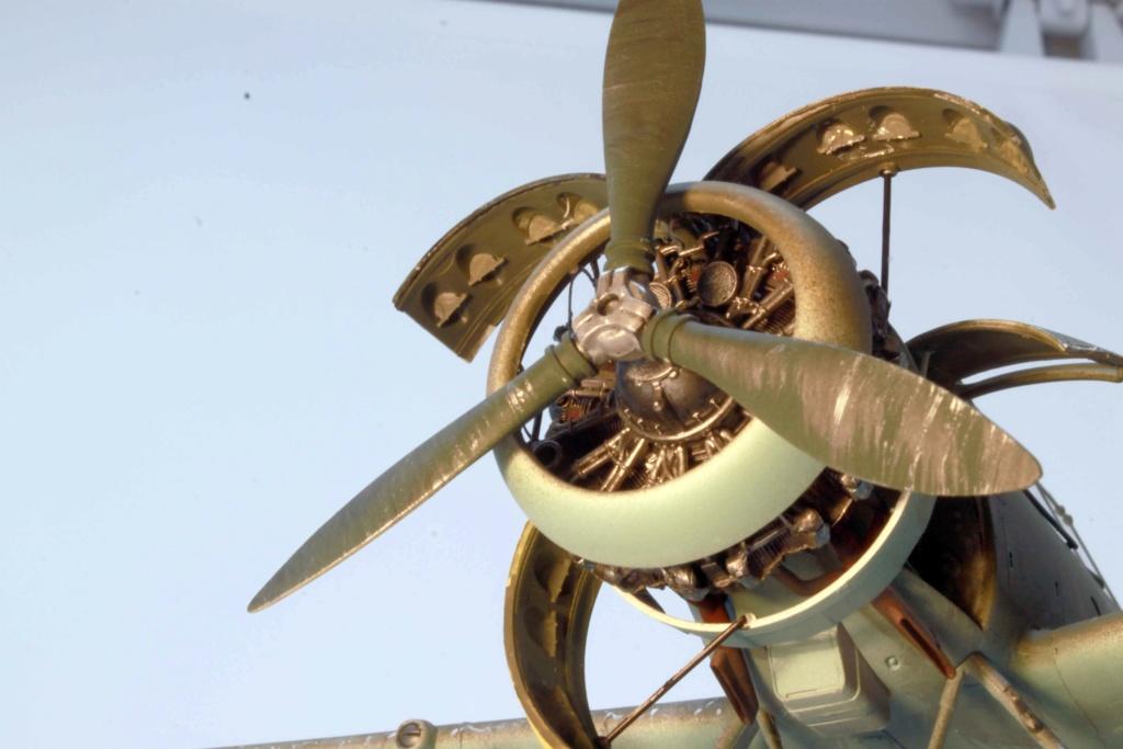 Arado Ar 196A-3 Seaplane - Revell - 1/32 - Page 8 Img_8950
