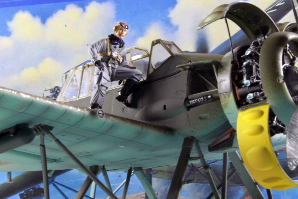 Arado Ar 196A-3 Seaplane - Revell - 1/32 - Page 9 Img_8955