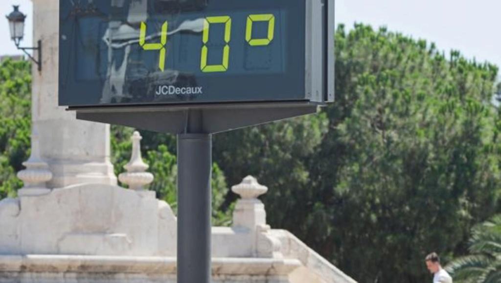 Le temps des lauriers Tiempo10