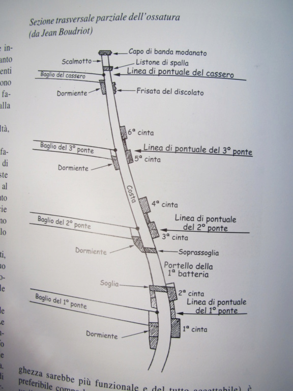 La Belle Hachette (marioandreoli) - Pagina 6 Img_4433