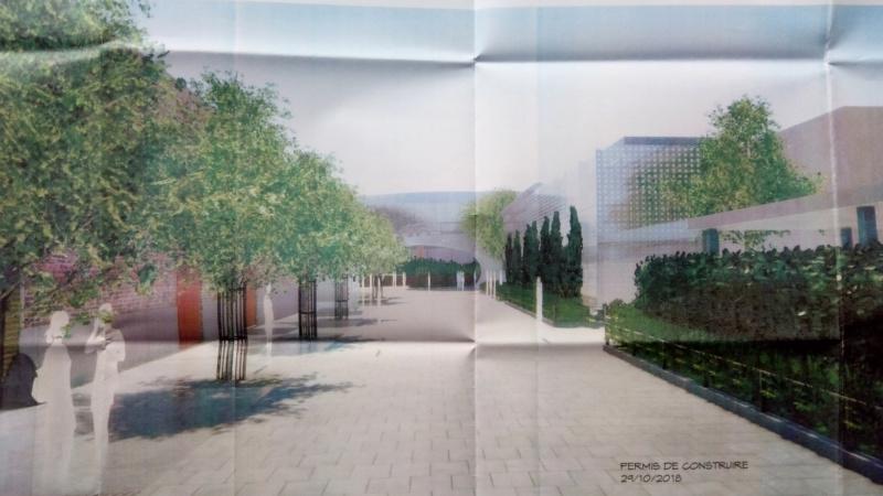Avengers Campus [Parc Walt Disney Studios - 2022] - Page 14 Img_2102