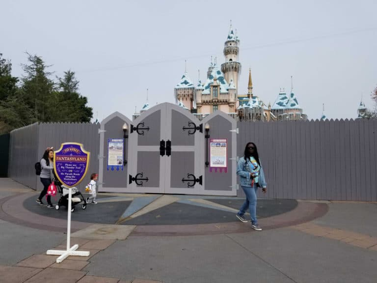 [Disneyland Resort] Réhabilitation Sleeping Beauty Castle (2019) Unname10