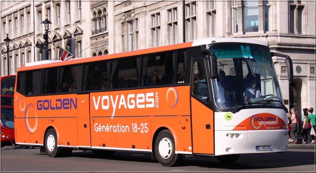 Golden Voyages 17019410