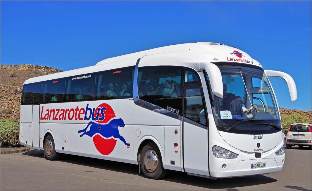 Lanzarotebus 31927110