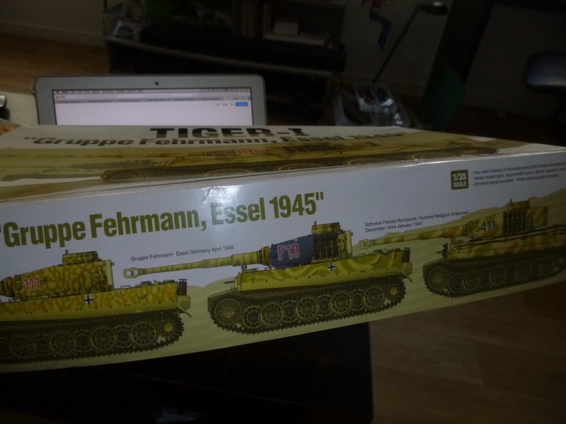 Tigre 1 Academy 1/35 Groupe Fehrman Allemagne 1945 P1050110