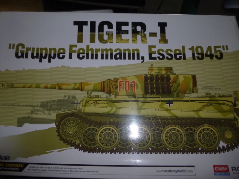 Tigre 1 Academy 1/35 Groupe Fehrman Allemagne 1945 P1050112