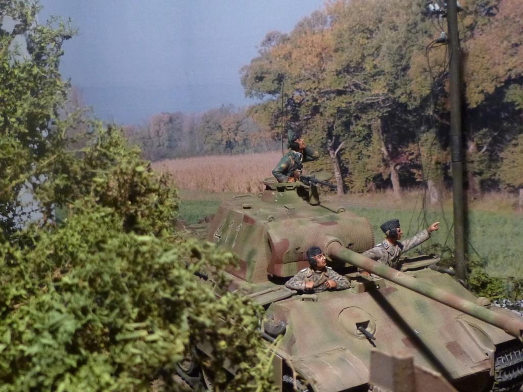 Eté 1944 un Panther  en Normandie -Tamiya- Verlinden- 1/35 - Page 2 P1050460