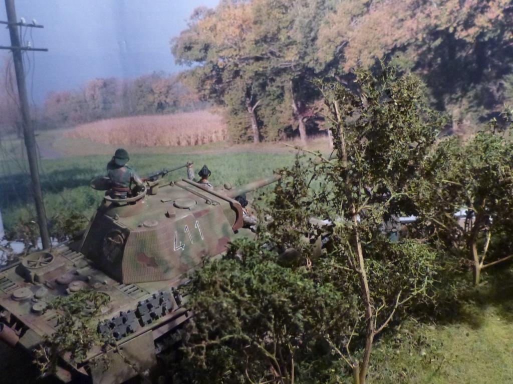 Eté 1944 un Panther  en Normandie -Tamiya- Verlinden- 1/35 - Page 2 P1050462
