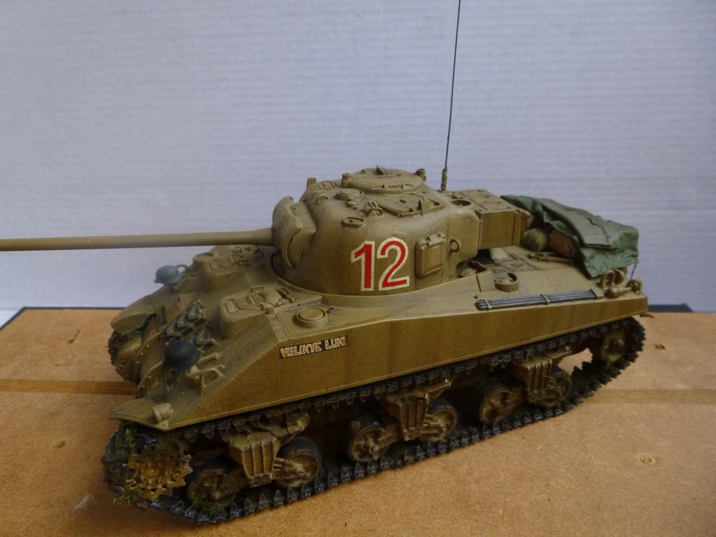 Sherman Firefly Dragon 1/35 P1050544