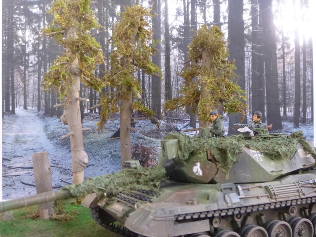 REFORGER Allemagne année 70 - 1:35 -Italeri Leopard 1A4-Valkyrie miniatures P1070515